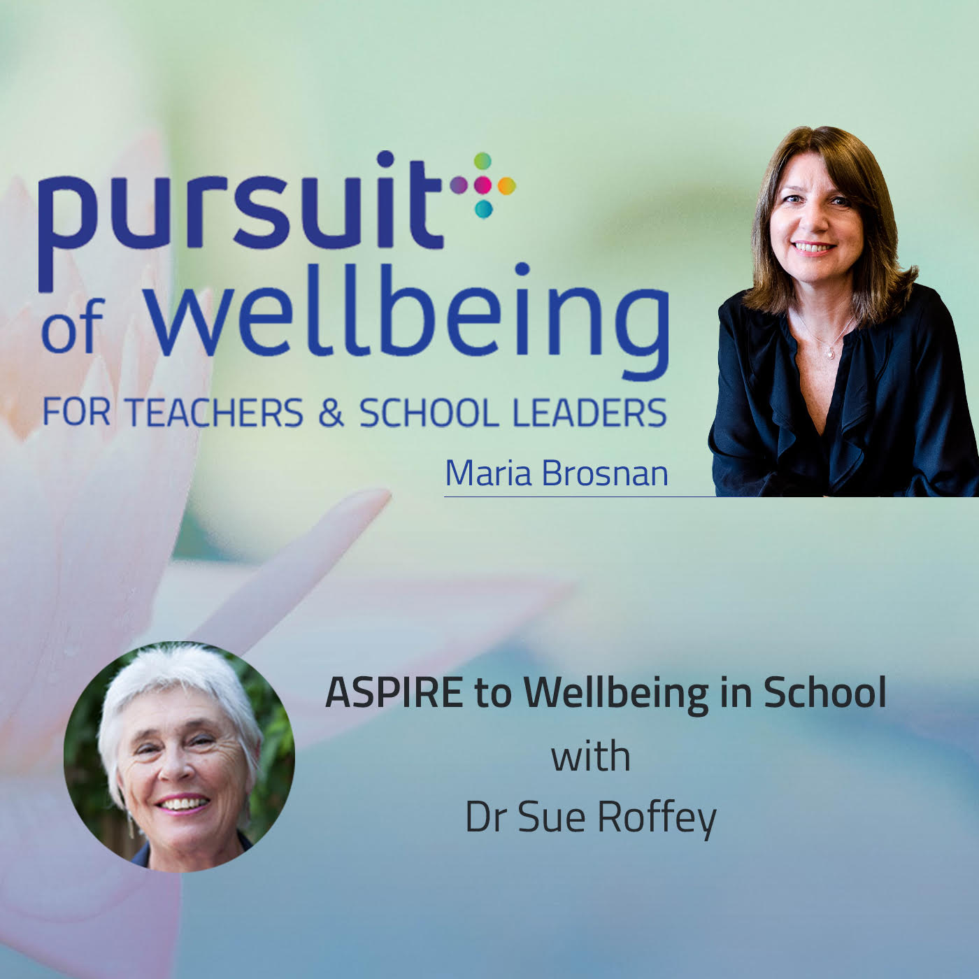 ASPIRE to Wellbeing in School with Dr Sue Roffey