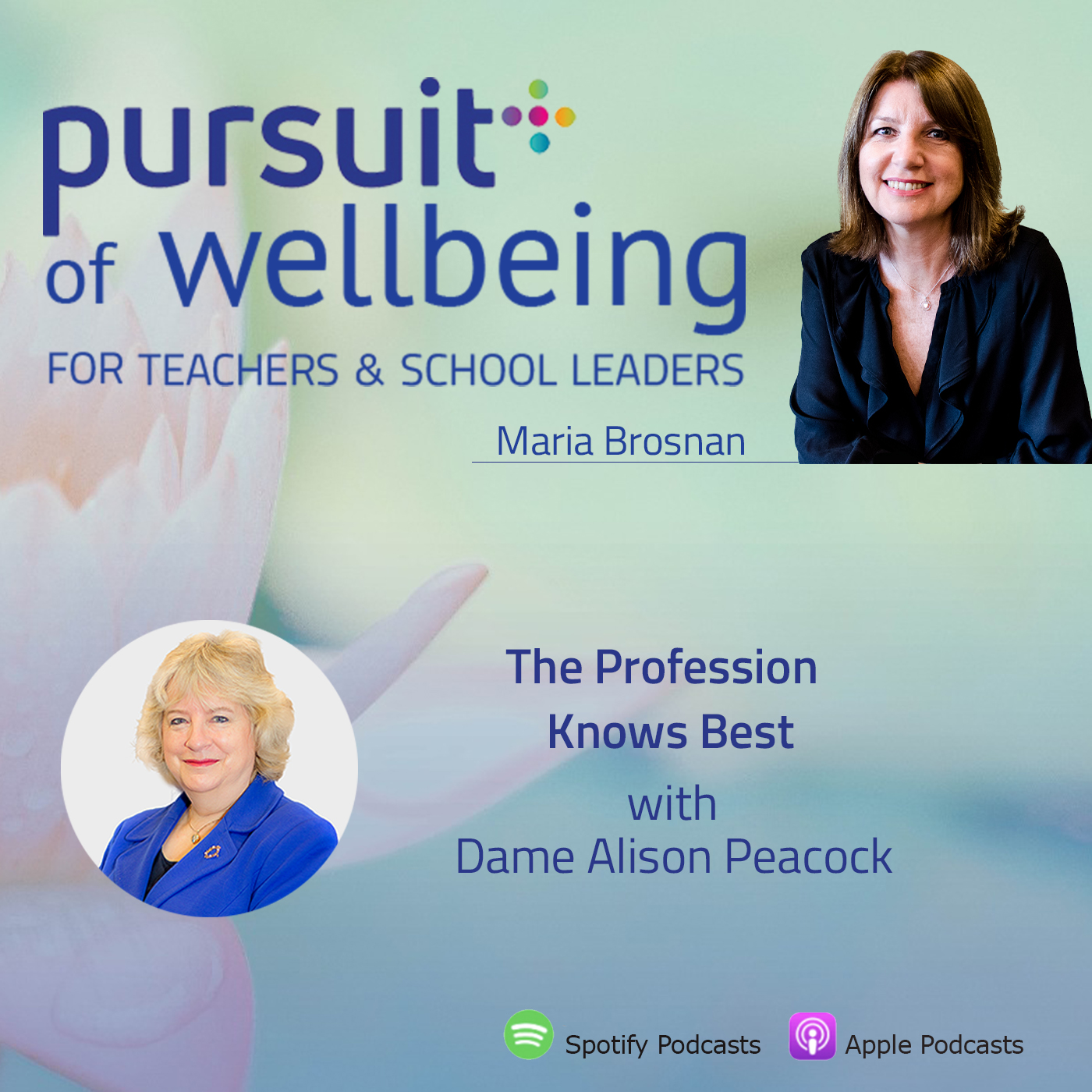 The Profession Knows Best with Dame Alison Peacock